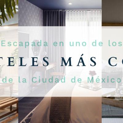Hoteles Para Parejas | Lujo y Romance en CDMX para el 14 de Febrero